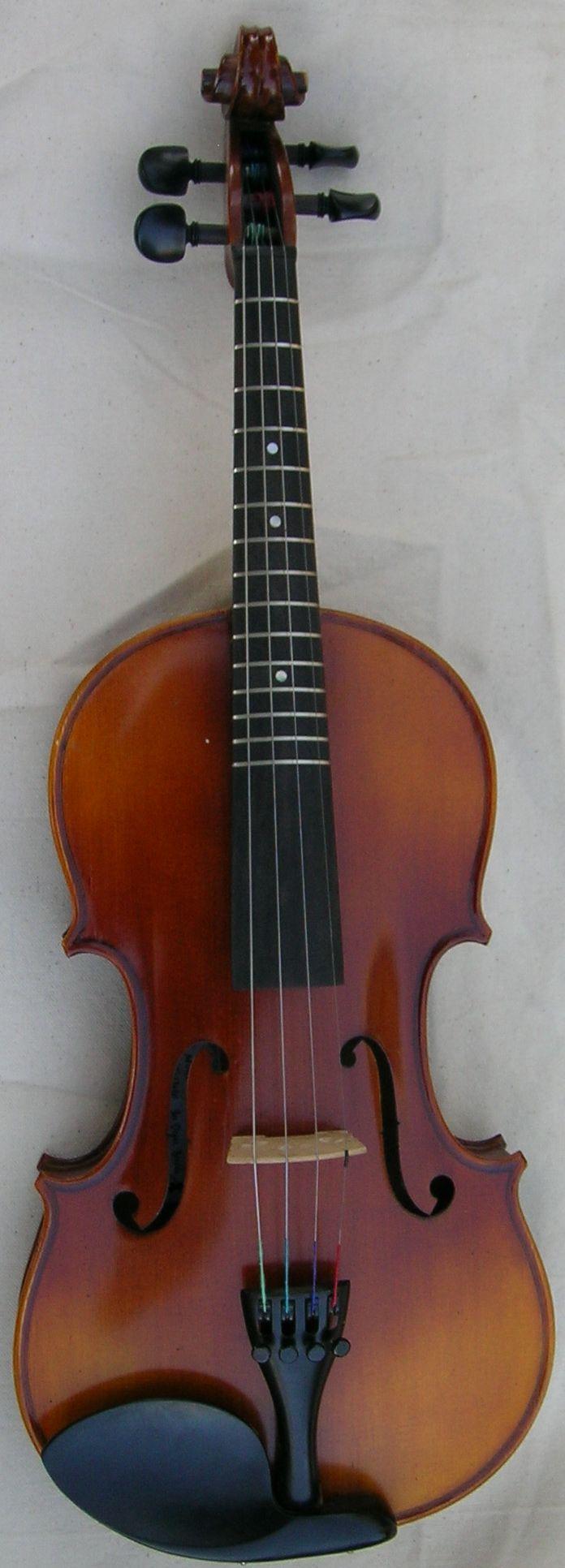 Salvatore Cadoni Fretted Acoustic Violin